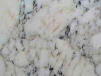 calacutta-gold-marble